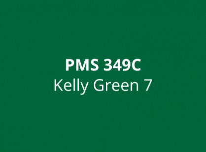 Kelly 3153